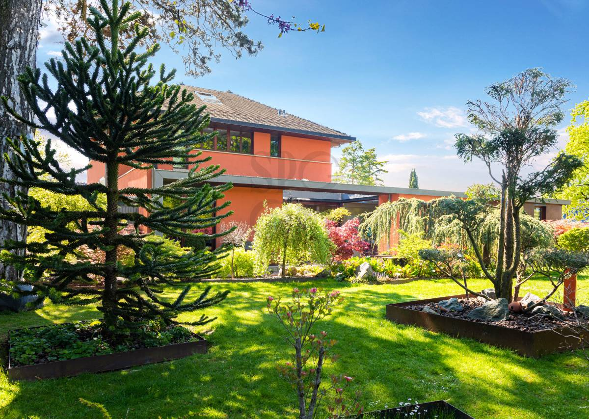 Charmante maison familiale et son jardin exotique